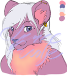 Lioness Headshot Adopt (OPEN) by VenusRain