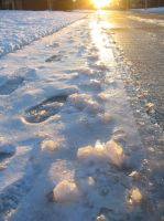 Golden Icy Road by Qrystal