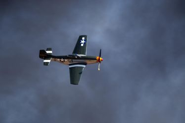 P-51D Mustang 2 by RogueAce