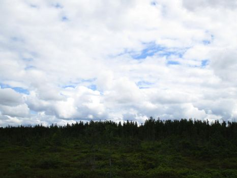 Clouds Over the Bog 2 by ChronosCat
