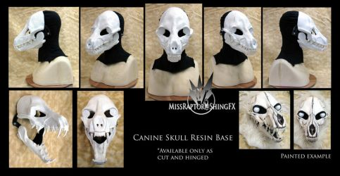 Canine Skull Resin Base by MissRaptor