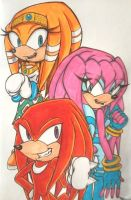 Three Echidnas (Coloured) by Sky-The-Echidna