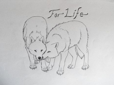 For Life... by Blackwolfoffireworks