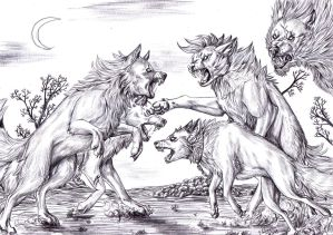 Pack vs Pack - BW by FuriarossaAndMimma