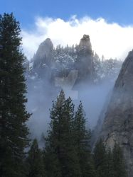 Unparalleled Light on Natures Cathedral by Yosemite-Stories