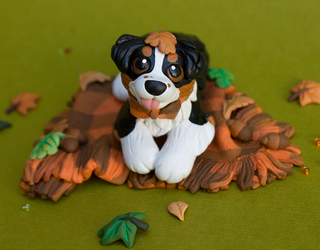 Australian Shepherd puppy on a blanket by SculptedPups