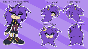 Shera the Hedgehog Ref Sheet by BeckyChelsea
