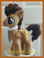 mlp plushie commission Dr Whooves completed by CINNAMON-STITCH