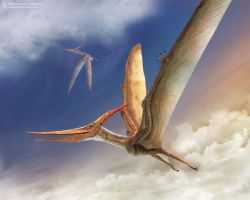 Flying Pteranodon by Swordlord3d