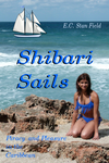 ShibariSailsCover03 by ecfield