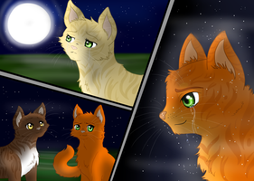 Firestar- A visit from StarClan by xXFrostwhiskerXx