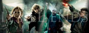 Harry Potter 7.2 Banner 2 by NERD485