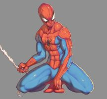 Spiderman by Mick-cortes