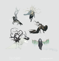 Driftwood Collection by witherlings