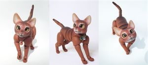 Jacob, Abyssinian Cat Ball Jointed Doll! 4 by vonBorowsky
