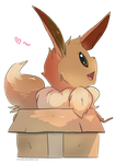 Eevee by Himmely