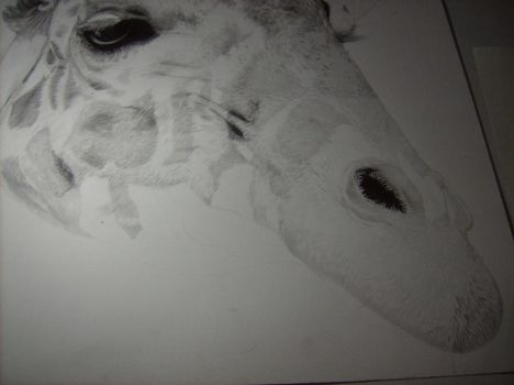 giraffe wip close up of pic 8 by abearoriginal