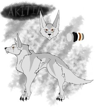 Akitia reference sheet by AndroidAss