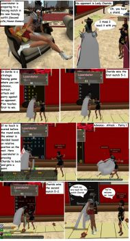Fencing in Virtual World by Laserskater