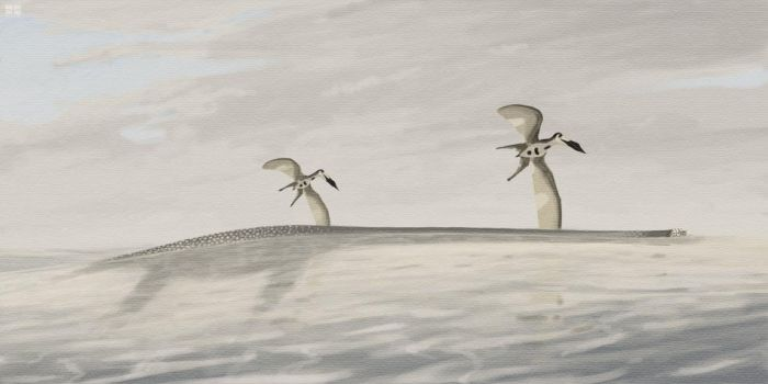 Elasmosaurus and Nyctosaurus by jconway