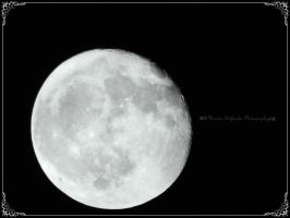 The white moon by moonik9
