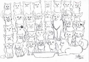 37 cats and 1 food-bowl by Sally-Ce