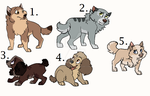 Pup adopts by Claire-Cooper