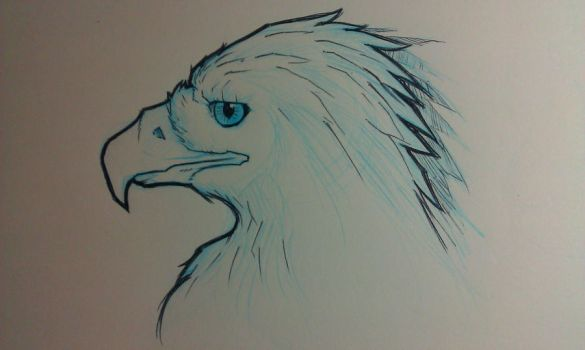 Golden Eagle sketch by Paterack