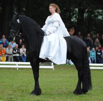 Ladies On Friesians 08 by ponystock