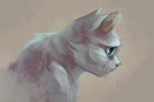 Dovewing by Speedienth