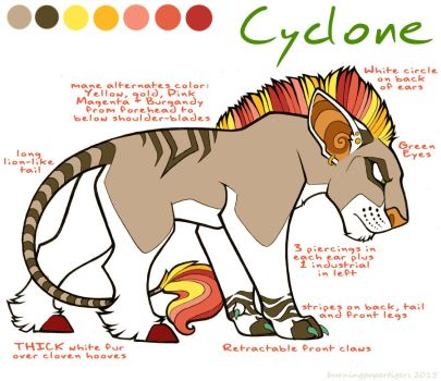 Cyclone Reference 2015 by burningpapertigers