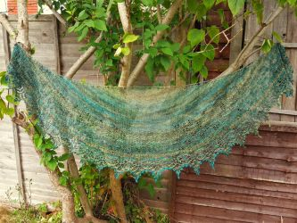 Dragonfly Handspun Shawl by FearlessFibreArts