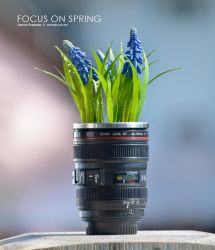 Focus on Spring by MusesTouch-digiArt