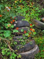 Still life with tyres by taisteng
