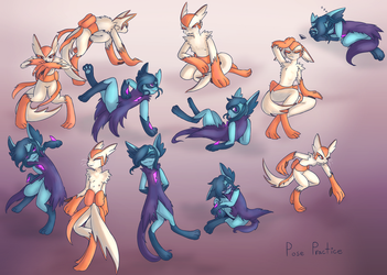 Hybrids Pose Practice - For Niv by OcarinaLin