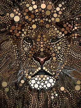 The lion by alraheef