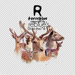 REBLUE's DEER PNG by l0vehcl