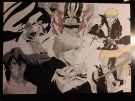 Ichigo Kurosaki collection complete: finished by SicaChii