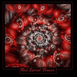 Red spiral flower 2 by gitte