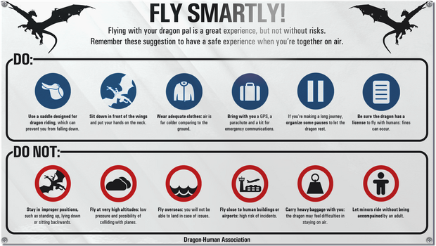 Fly smartly! DHA guide to safe dragon riding by RandomVanGloboii