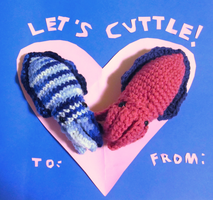 Valentine Cuttles by Chromodoris