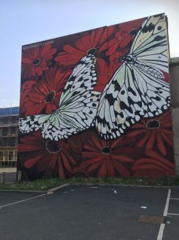 butterfly wall by WhoAreYou1978