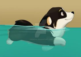 Swimming Pudge by mewgal