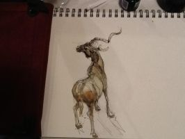 Kudu - lunch doodle by GilTriana