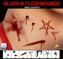 Blood and Fleshwounds Brushes by HJR-Designs
