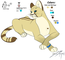 Sanaa Ref Sheet by TheRealBlackLion