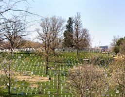 Arlington National Cemetery No. 1 by slephoto