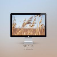 Spicus by ASIAONLY