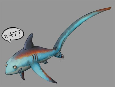 Thresher Shark by CliffeArts
