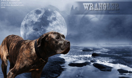 Wrangler by oh-its-bliss